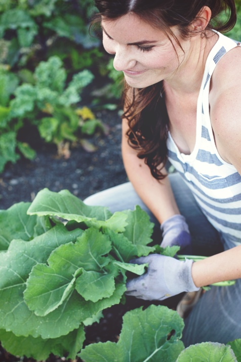 Harvesting collards (photo credit: In Her Image Photography)