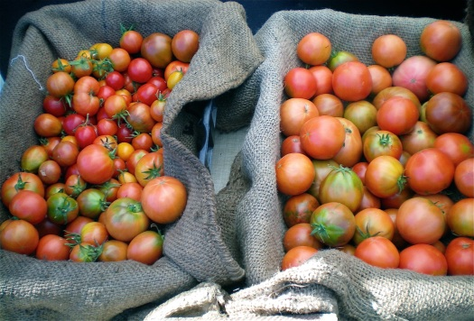 A mix of heirloom tomatoes