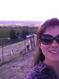 Munselle Vineyards in Alexander Valley