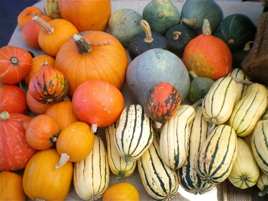 Cold days call for meals with tasty winter squash