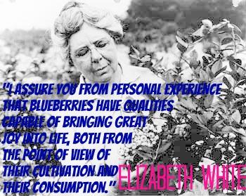 Elizabeth quote