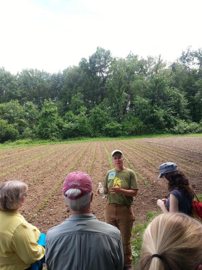 Nancy Hanson, CSA program manager, giving a farm tour